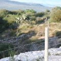 2.5 Beautiful Hectares Near Pozos With Well - View of Land