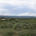 2.5 Beautiful Hectares Near Pozos With Well - View On Property During Green/Rainy Season