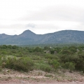 2.5 Beautiful Hectares Near Pozos With Well - View of Old Train Trestle Across Road