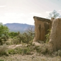 Magnificent Ex-Hacienda Del Carmen on Approx. 44.5 Acres/18 Hectareas - Native Plants Share the Land with Ruins