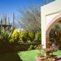 Are You Looking for a Home, a Family Compound, or B & B Business? Exclusive Listing - Terraza arches and gardens with jacuzzi