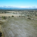 Idyllic Country Setting With Loads of Potential! - Aerial view of land and casita with neighboring properties.