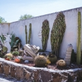 Jewel-Box Casita with Room to Expand - Garden