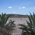 St. Brigida Lot: Sensational Location and Endless Potential -