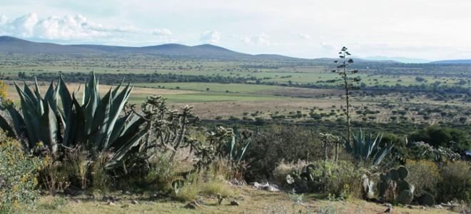 Panoramic Views of Ruins & Mountains