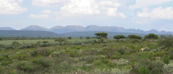 2.5 Beautiful Hectares Near Pozos With Well