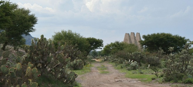 2 Hectares Adjacent Santa Brigida Ruins