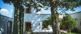 Traditional Home, Casita and Extensive Gardens in Great Central Location! Exclusive Listing