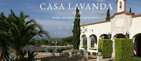 Lavender Estate with Stunning Views in Las Barrancas